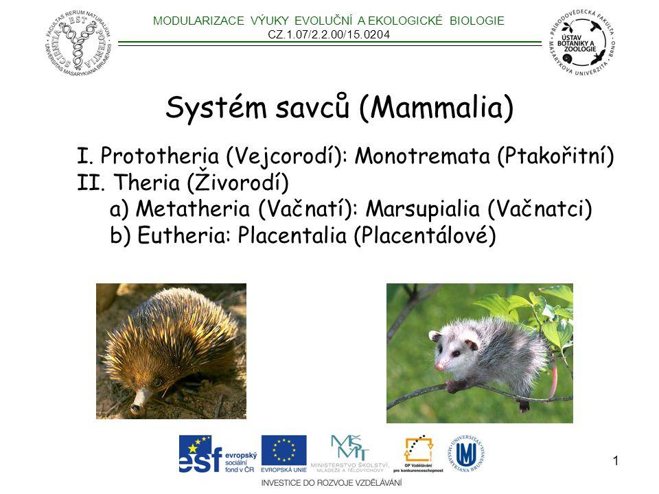 Systém savců (Mammalia)