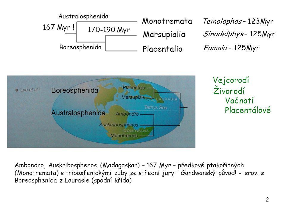 Monotremata Marsupialia Placentalia Vejcorodí Živorodí Vačnatí