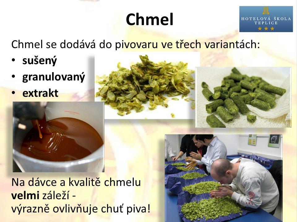Chmel Chmel se dodává do pivovaru ve třech variantách: sušený