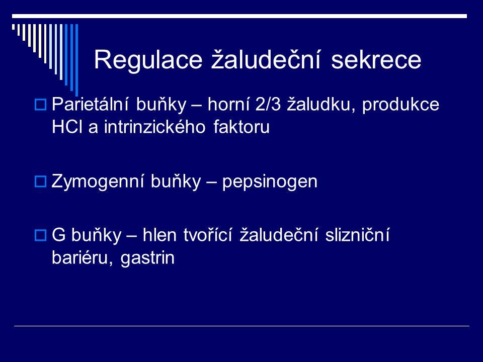 Regulace žaludeční sekrece