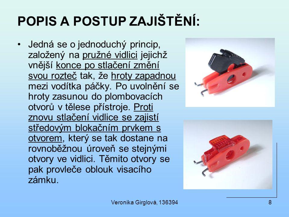 POPIS A POSTUP ZAJIŠTĚNÍ: