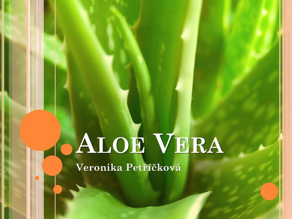 Aloe Vera Veronika Petříčková