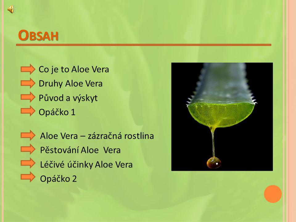 Obsah Co je to Aloe Vera Druhy Aloe Vera Původ a výskyt Opáčko 1