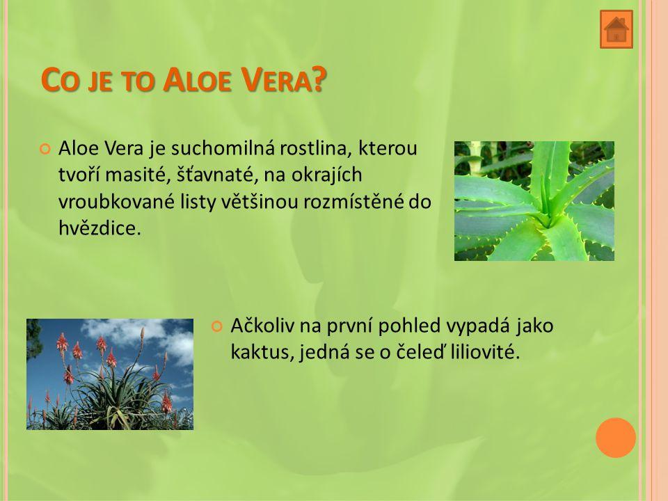 Co je to Aloe Vera
