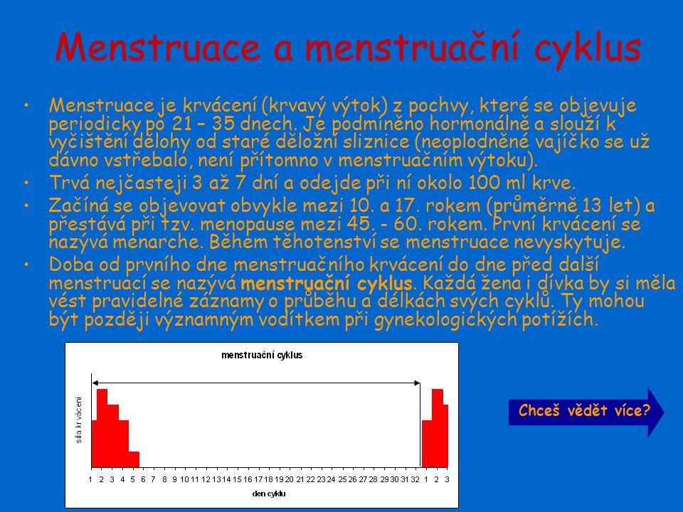 Menstruace a menstruační cyklus