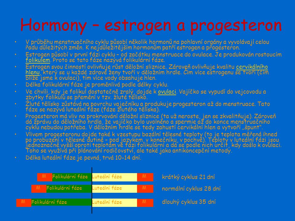 Hormony – estrogen a progesteron