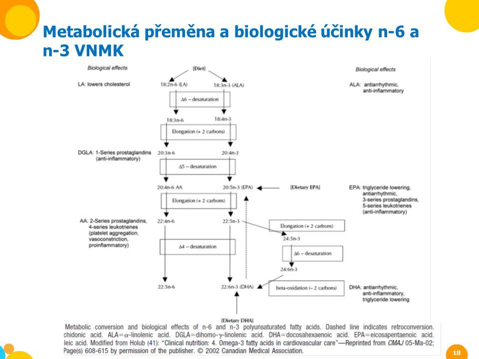 Metabolická přeměna a biologické účinky n-6 a n-3 VNMK