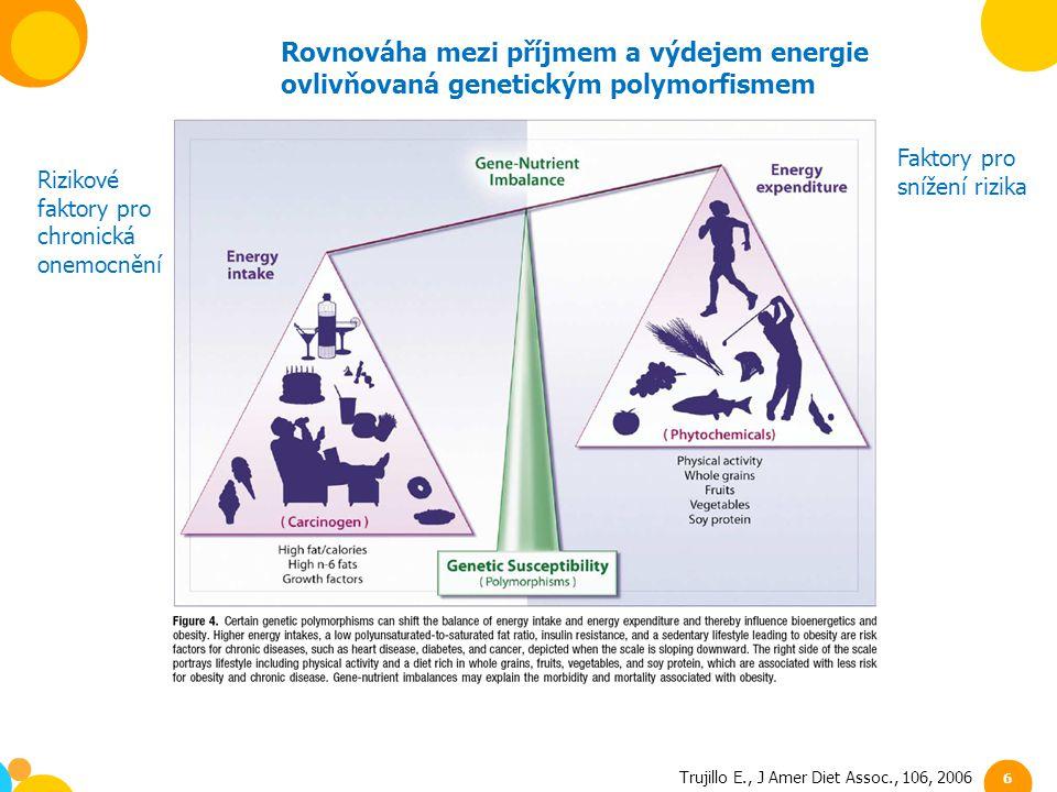 Rovnováha mezi příjmem a výdejem energie