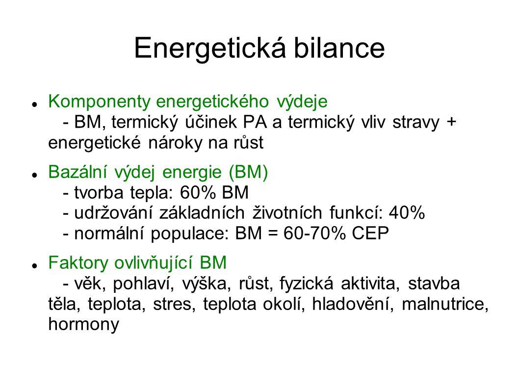 Energetická bilance Komponenty energetického výdeje - BM, termický účinek PA a termický vliv stravy + energetické nároky na růst.