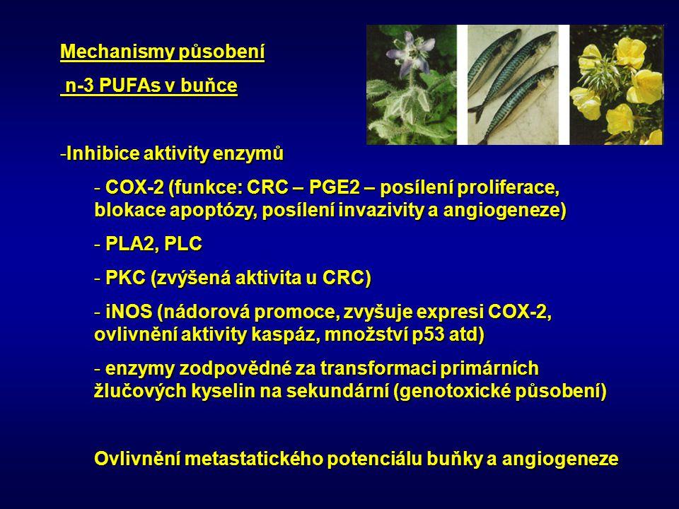 Mechanismy působení n-3 PUFAs v buňce. Inhibice aktivity enzymů.
