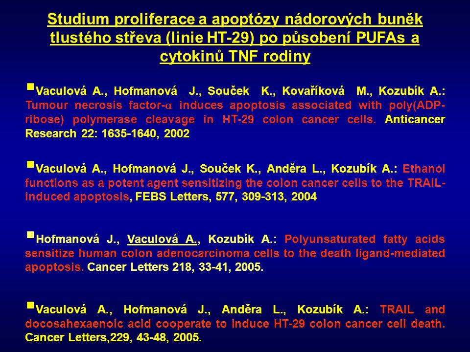 Studium proliferace a apoptózy nádorových buněk tlustého střeva (linie HT-29) po působení PUFAs a cytokinů TNF rodiny