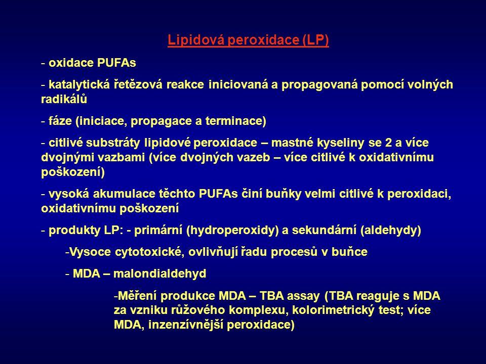Lipidová peroxidace (LP)