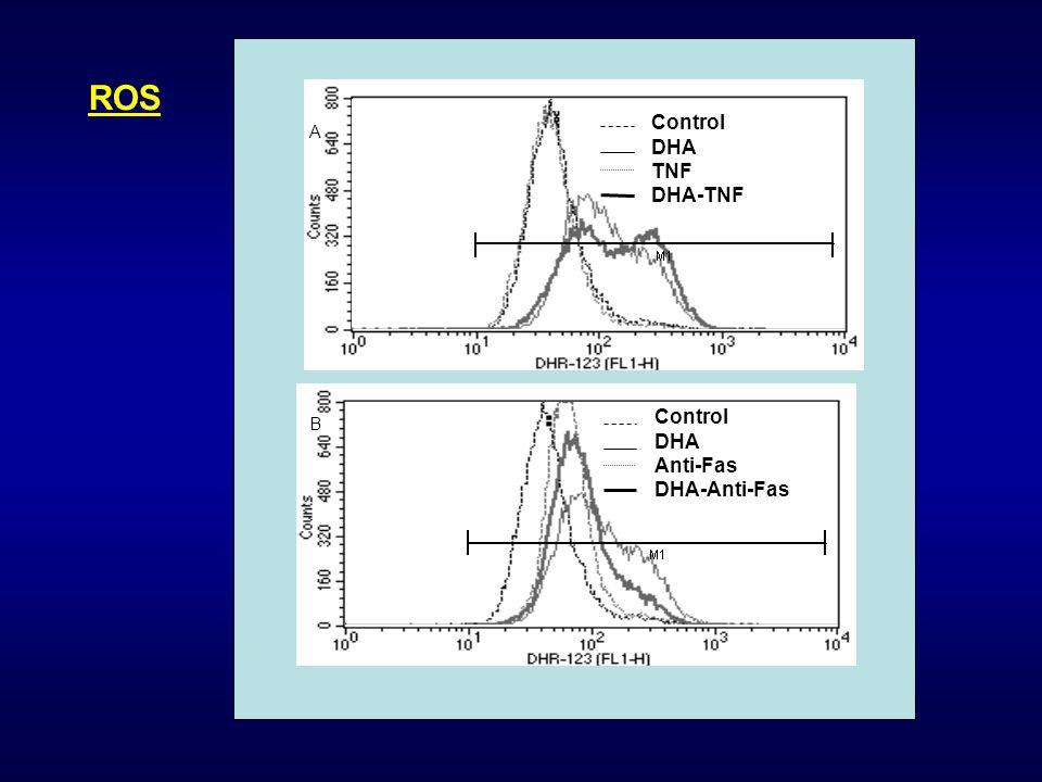 ROS Control DHA TNF DHA-TNF A Control DHA Anti-Fas DHA-Anti-Fas B