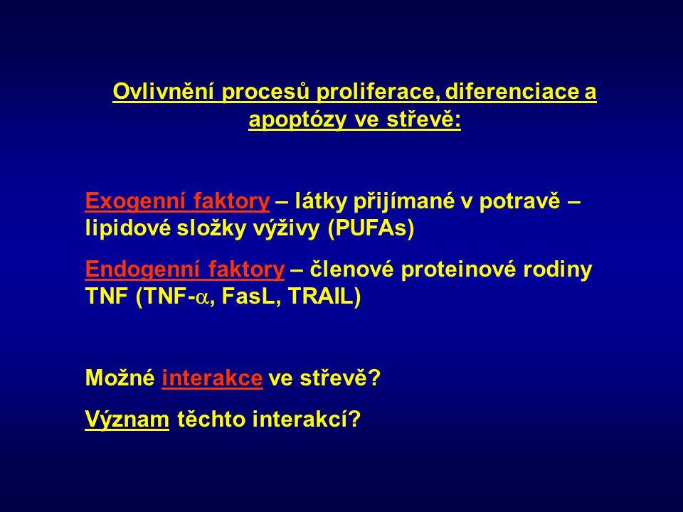 Ovlivnění procesů proliferace, diferenciace a apoptózy ve střevě: