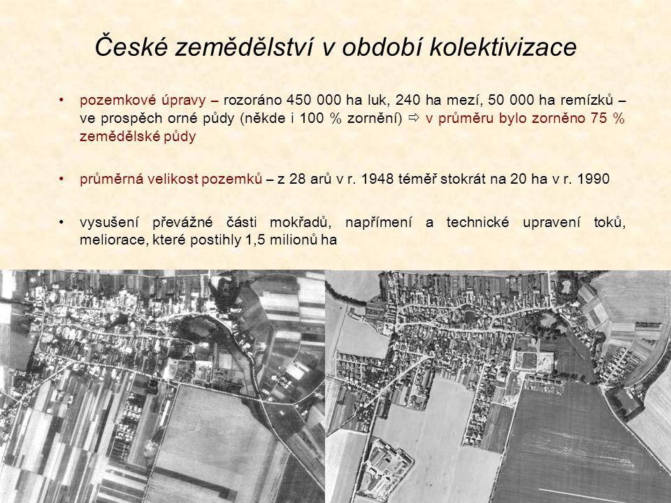 České zemědělství v období kolektivizace