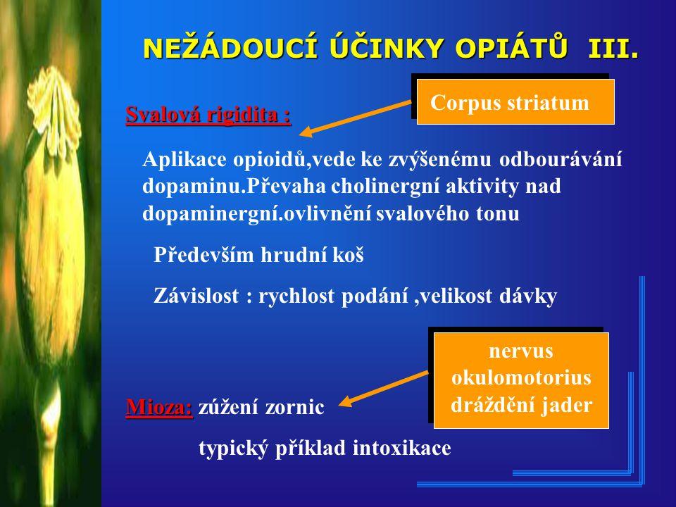nervus okulomotorius dráždění jader