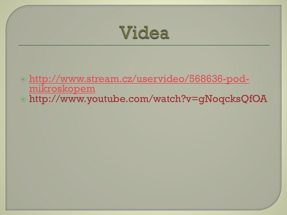Videa http://www.stream.cz/uservideo/568636-pod-mikroskopem