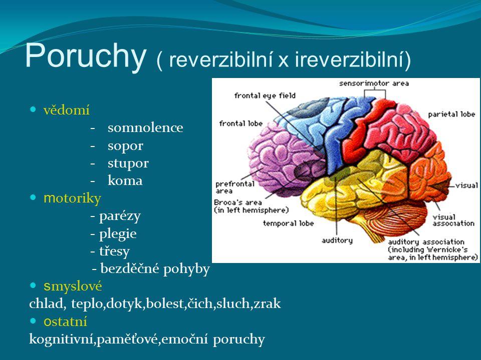 Poruchy ( reverzibilní x ireverzibilní)