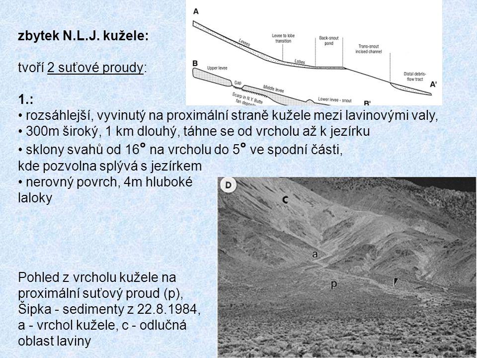 zbytek N.L.J. kužele: tvoří 2 suťové proudy: 1.: rozsáhlejší, vyvinutý na proximální straně kužele mezi lavinovými valy,