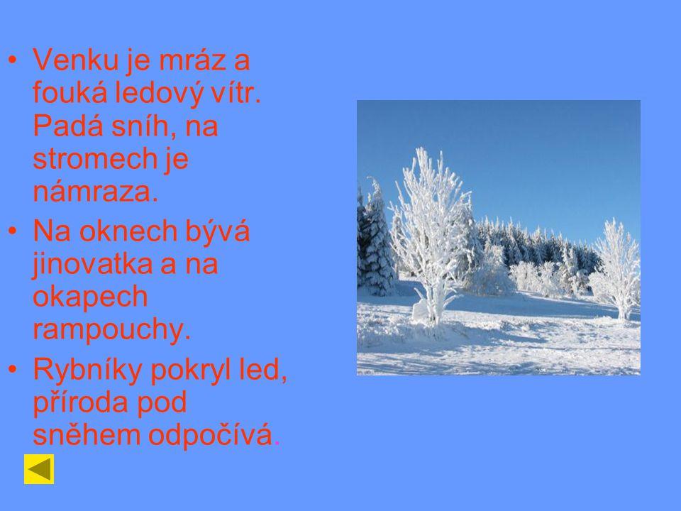Venku je mráz a fouká ledový vítr. Padá sníh, na stromech je námraza.