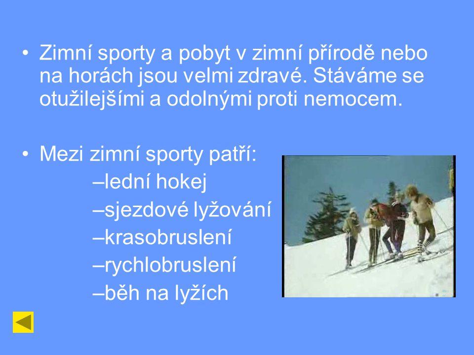 Zimní sporty a pobyt v zimní přírodě nebo na horách jsou velmi zdravé