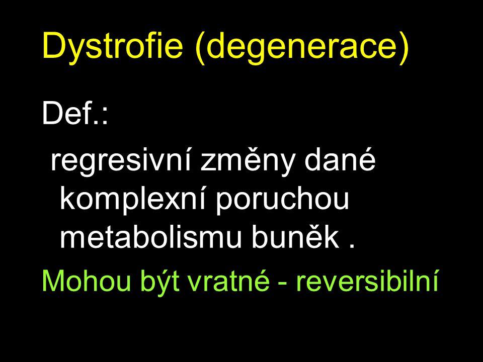 Dystrofie (degenerace)
