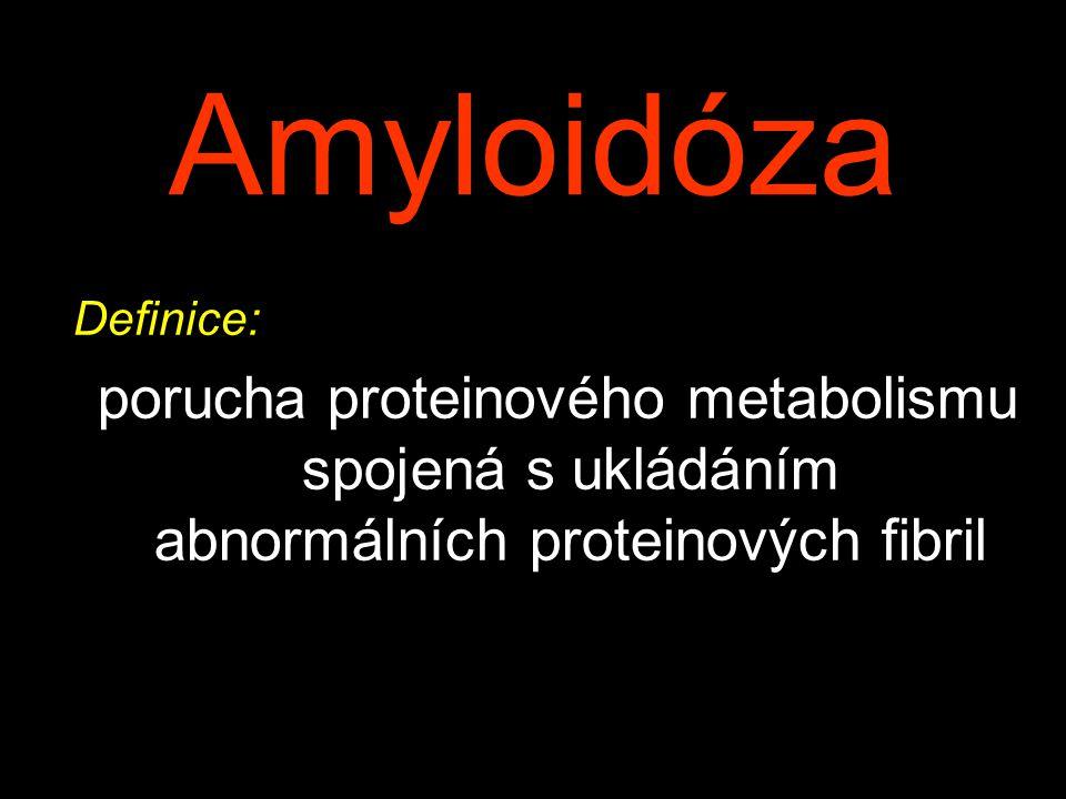 Amyloidóza Definice: porucha proteinového metabolismu spojená s ukládáním abnormálních proteinových fibril.
