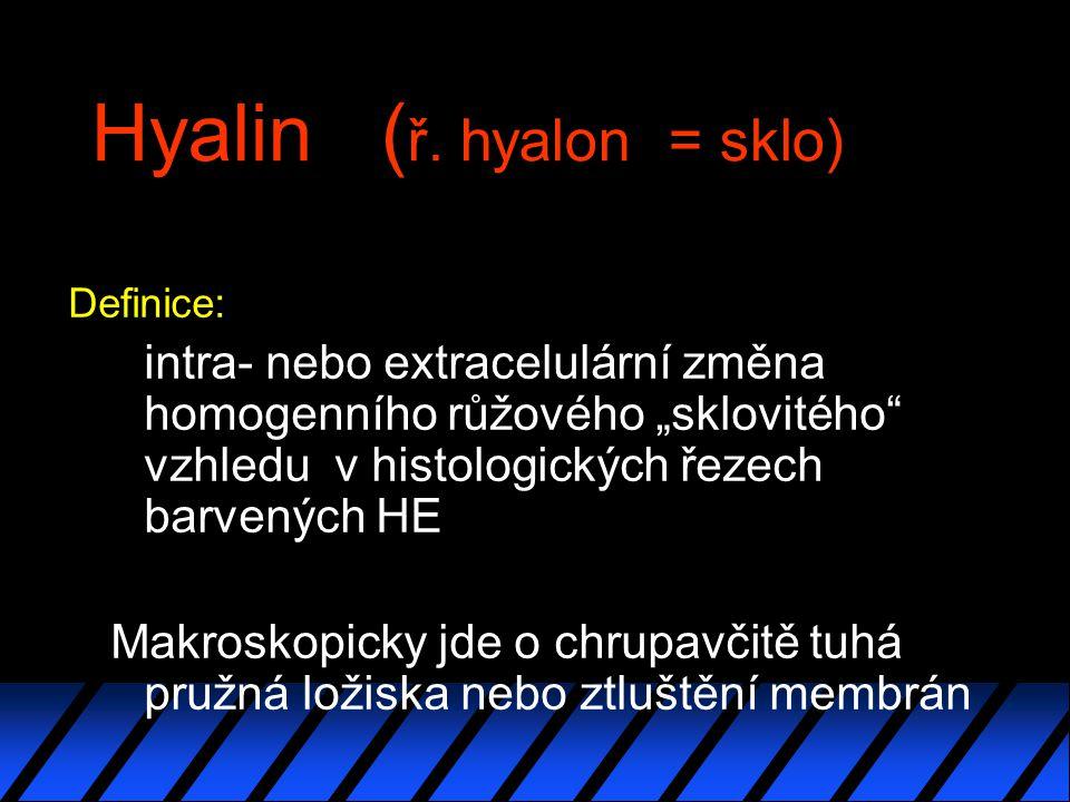 Hyalin (ř. hyalon = sklo)