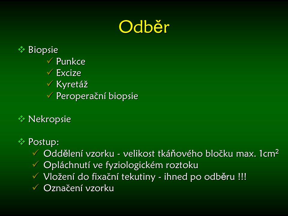 Odběr Biopsie Punkce Excize Kyretáž Peroperační biopsie Nekropsie