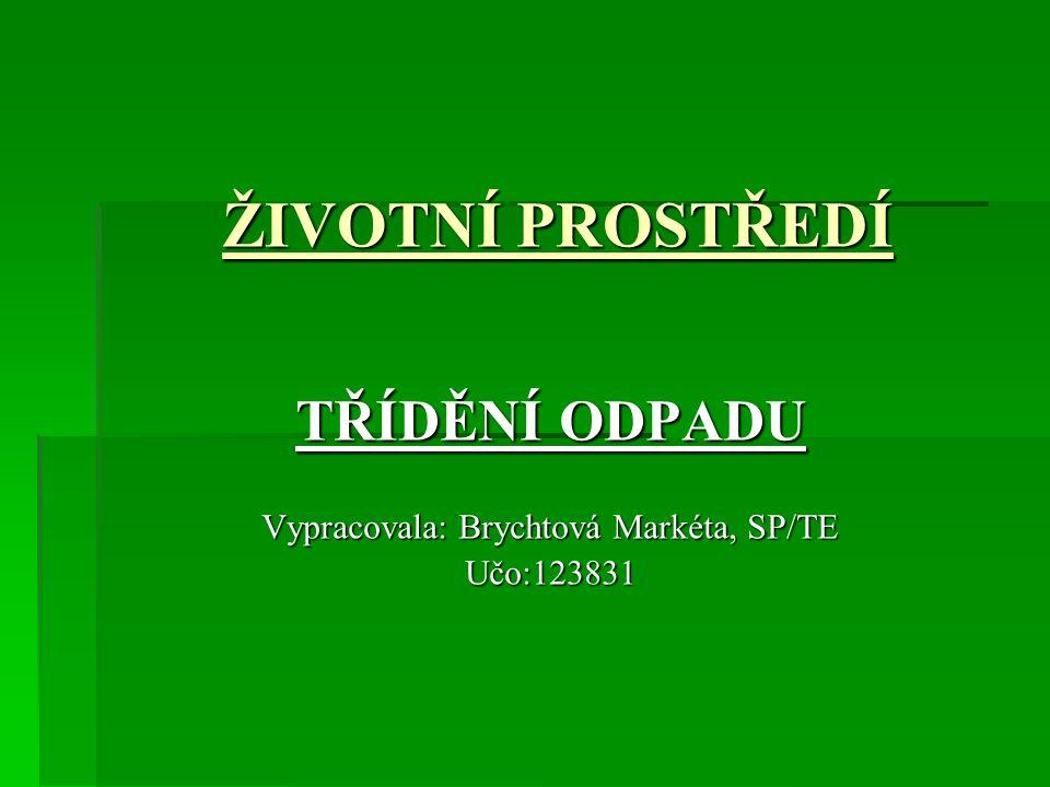 TŘÍDĚNÍ ODPADU Vypracovala: Brychtová Markéta, SP/TE Učo:123831