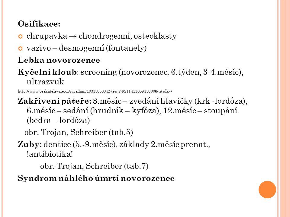 chrupavka → chondrogenní, osteoklasty vazivo – desmogenní (fontanely)