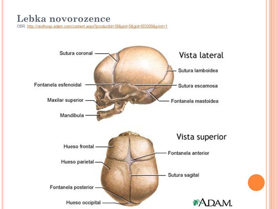 Lebka novorozence OBR. http://reidhosp. adam. com/content. aspx