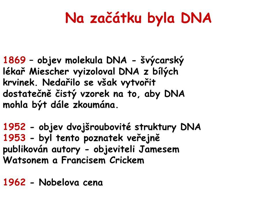 Na začátku byla DNA
