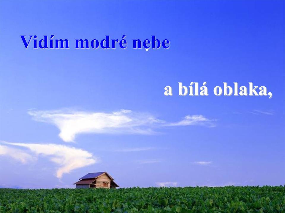 Vidím modré nebe a bílá oblaka,