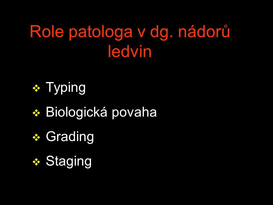 Role patologa v dg. nádorů ledvin