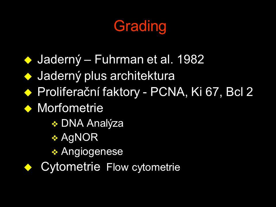 Grading Jaderný – Fuhrman et al. 1982 Jaderný plus architektura
