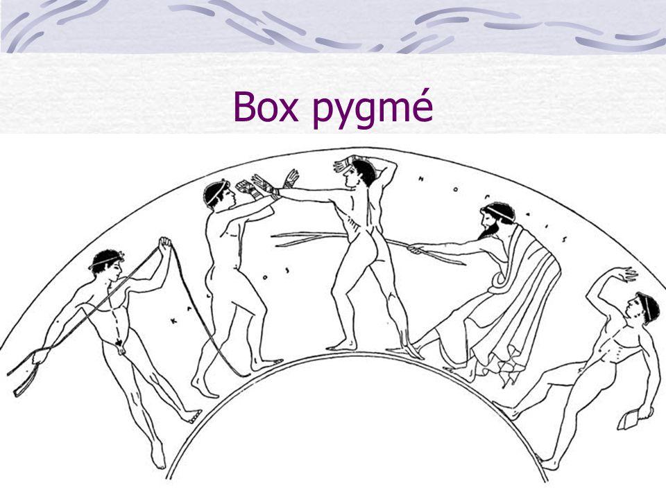 Box pygmé