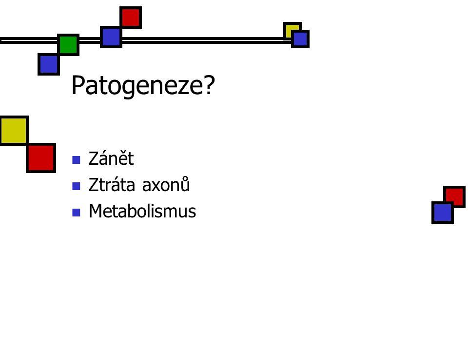 Patogeneze Zánět Ztráta axonů Metabolismus