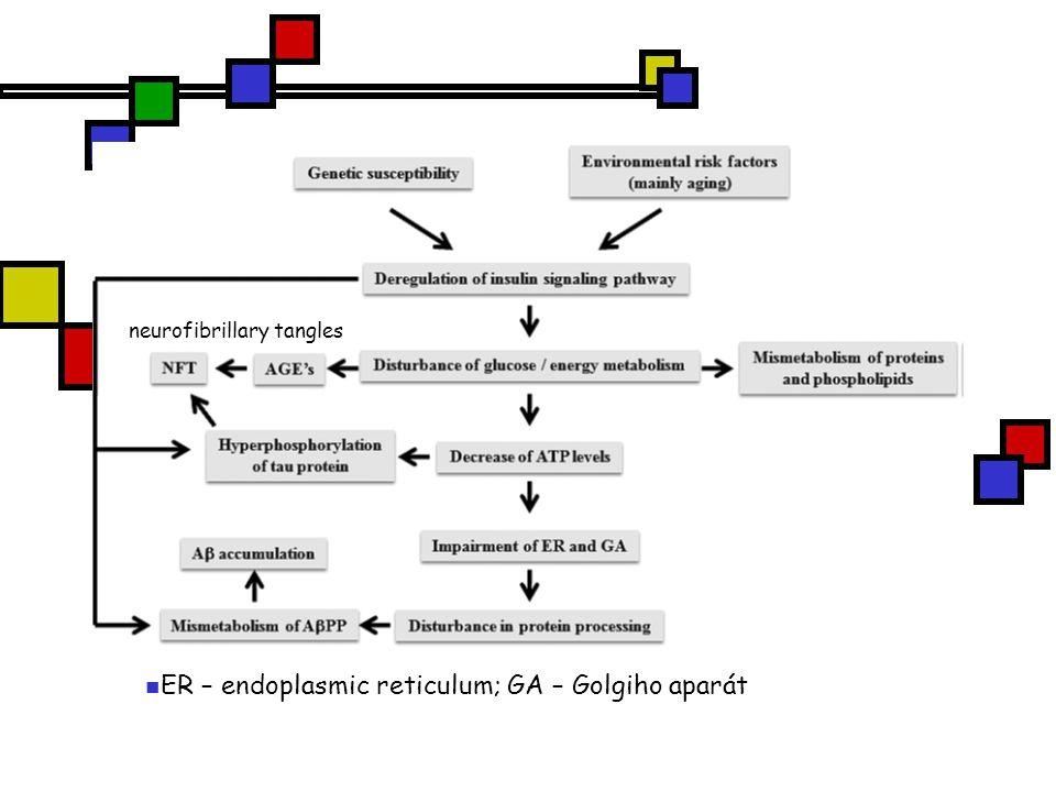 ER – endoplasmic reticulum; GA – Golgiho aparát