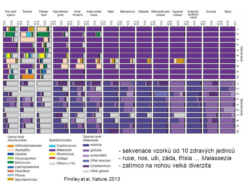 sekvenace vzorků od 10 zdravých jedinců