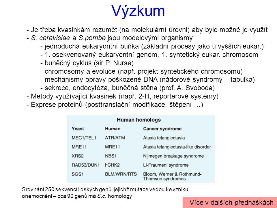 Výzkum Je třeba kvasinkám rozumět (na molekulární úrovni) aby bylo možné je využít. S. cerevisiae a S.pombe jsou modelovými organismy.
