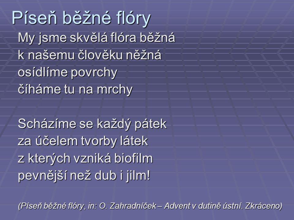 Píseň běžné flóry My jsme skvělá flóra běžná k našemu člověku něžná