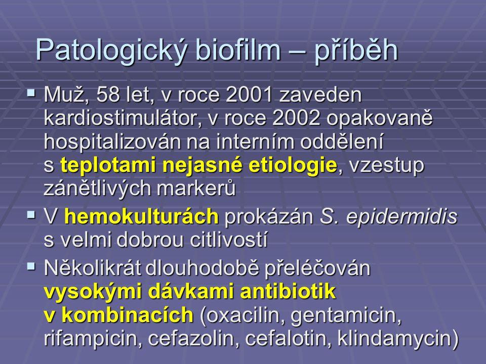Patologický biofilm – příběh