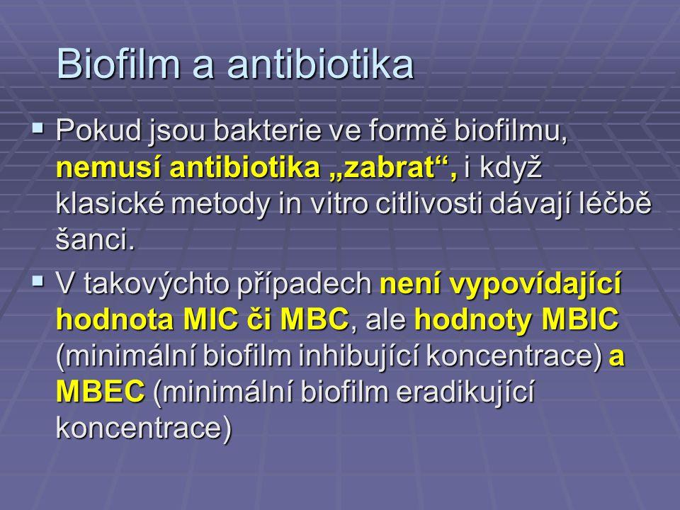 Biofilm a antibiotika