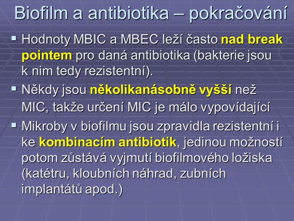 Biofilm a antibiotika – pokračování