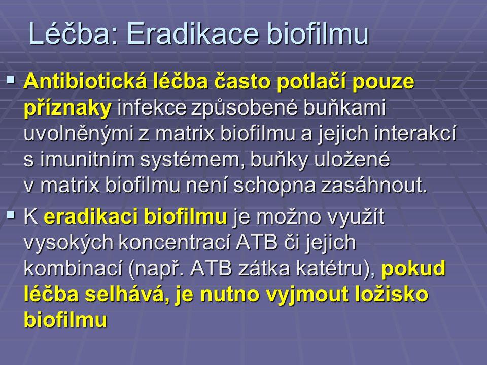 Léčba: Eradikace biofilmu