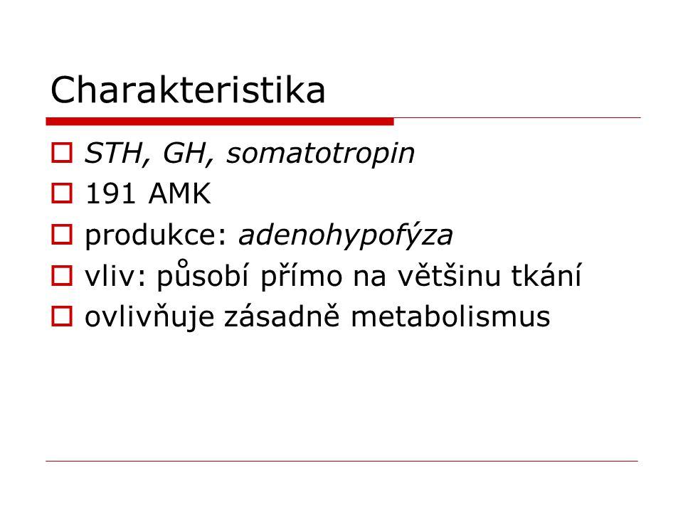 Charakteristika STH, GH, somatotropin 191 AMK produkce: adenohypofýza