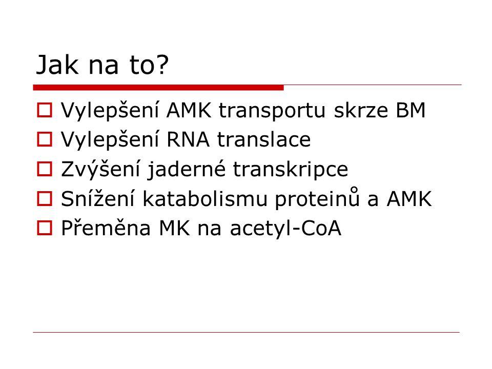 Jak na to Vylepšení AMK transportu skrze BM Vylepšení RNA translace