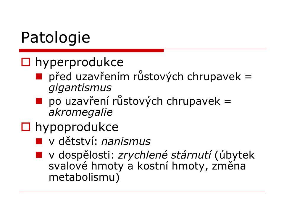 Patologie hyperprodukce hypoprodukce