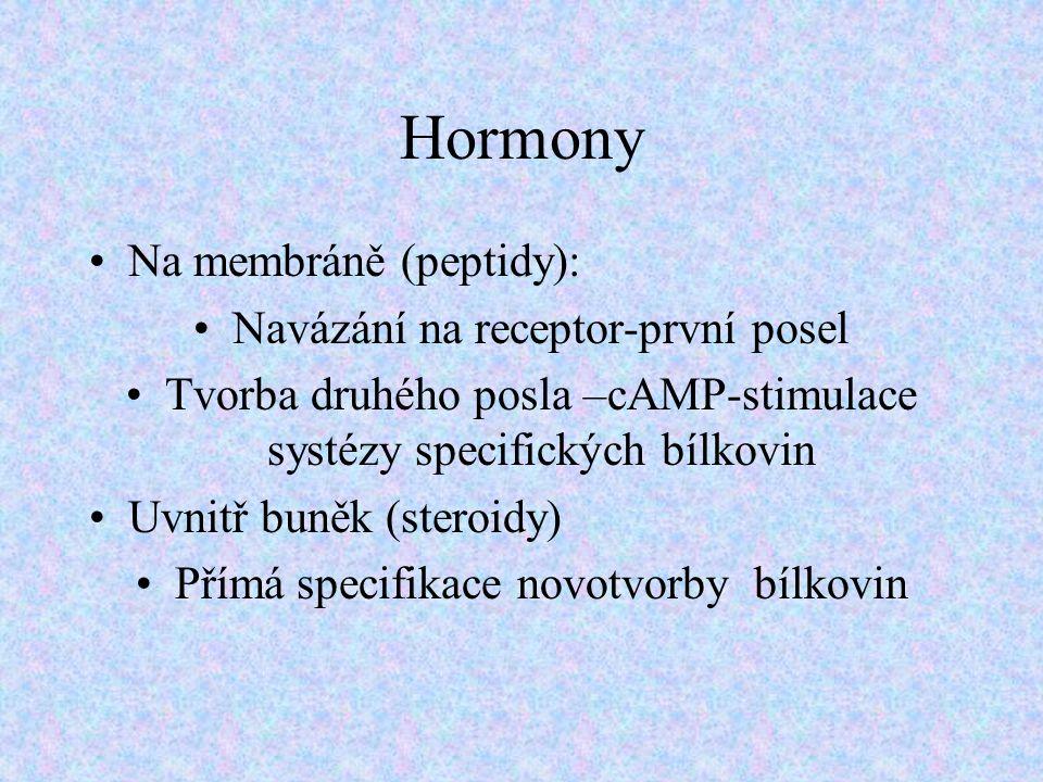 Hormony Na membráně (peptidy): Navázání na receptor-první posel